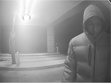 suspect-2